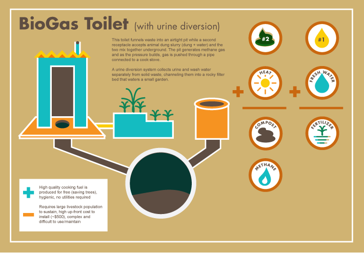 Know Your Toilet Toilets Come In All Shapes And Sizes We Invite
