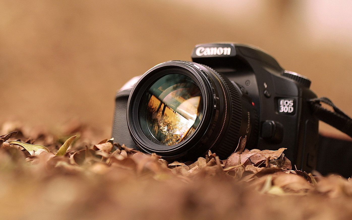 One of my favorite hobbies. Photography | WIS DigLit Kai Lambon ...
