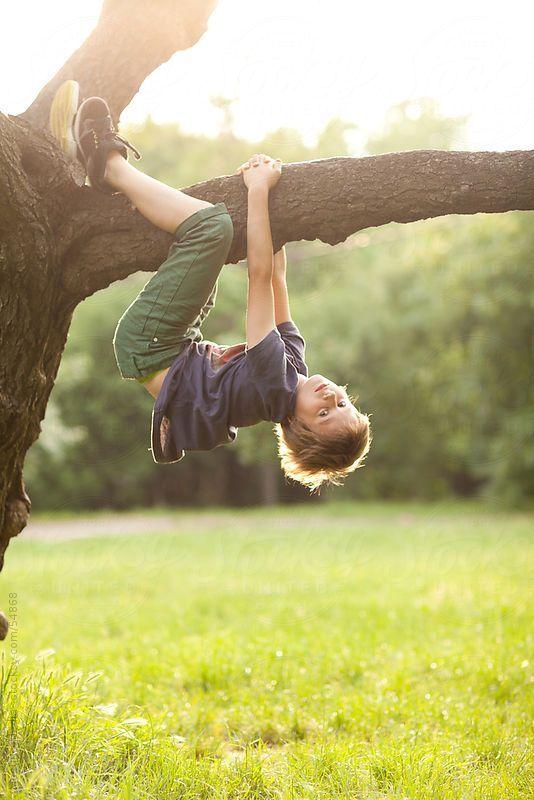 Αποτέλεσμα εικόνας για children climbing to tree