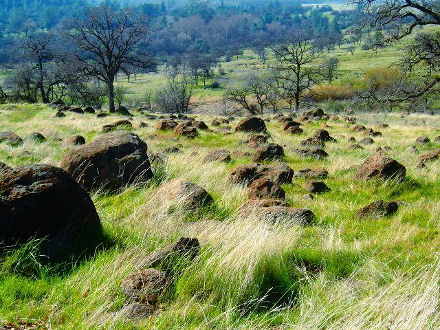 Upper Bidwell Park, Chico, CA