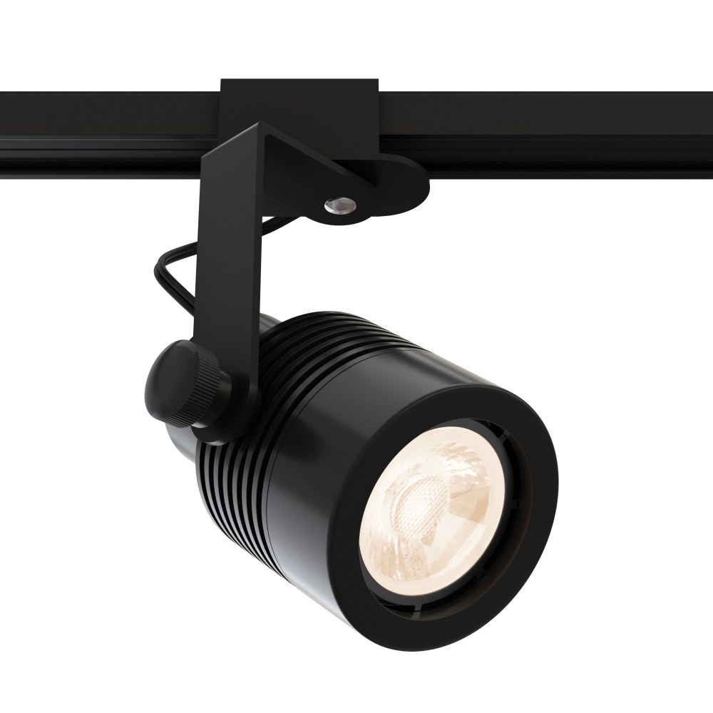 Micro Outdoor Track Light Mr16 12v By