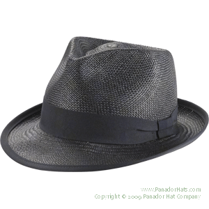 b70eb0284a022 my newest obsession -- panama hats ! get a straw one for summer and when  fall comes around opt for a heavier fabric in a darker color ! LOOOVVEEE