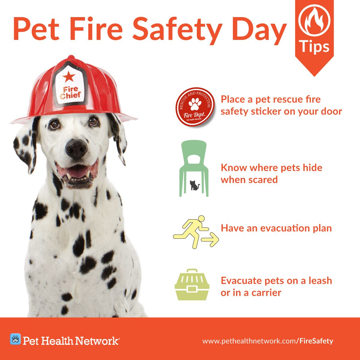 Pet Fire Safety Day! Here's a few tips to keep your