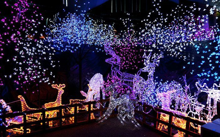 christmas outdoor exterior lights buying guide