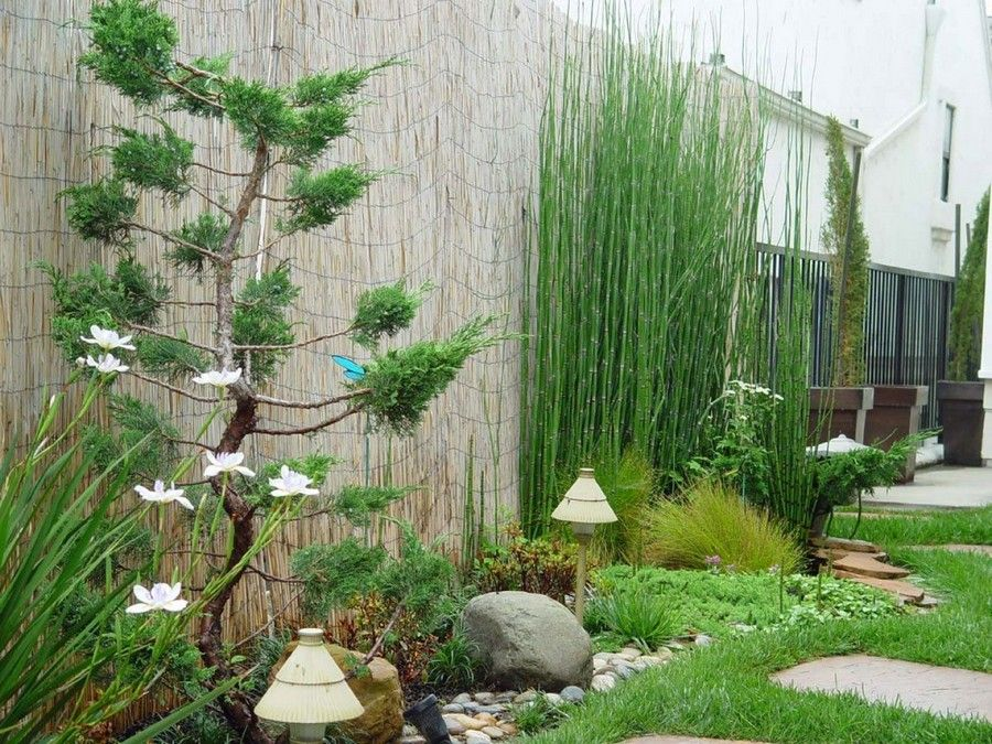 decorating modern small garden design ideas with fabulous small bamboo and unique stand lamp