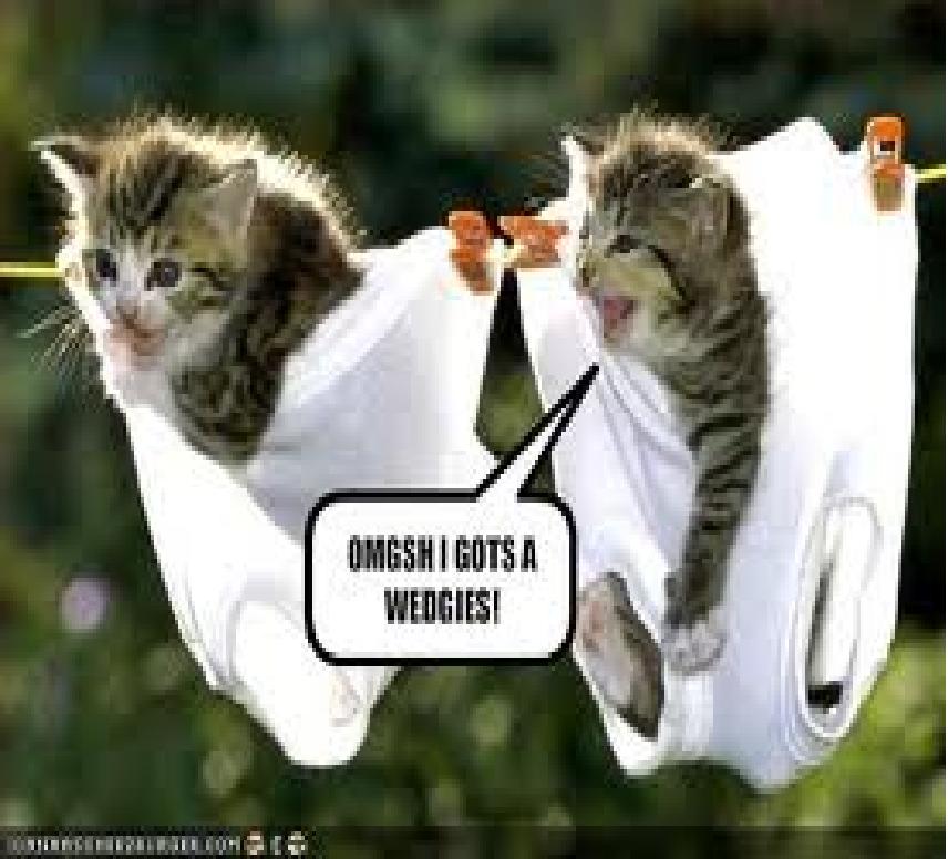 ouch - Cute Kittens Photo (30491184) - Fanpop | cute photos ...