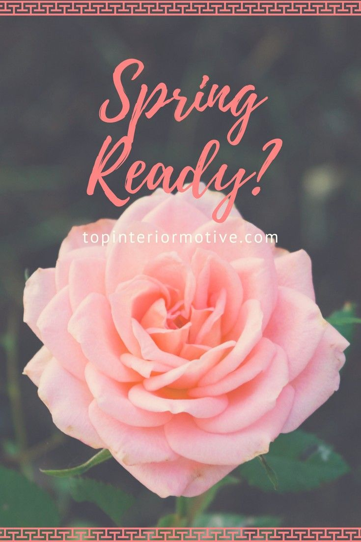 Are You Spring Ready? Quick And Easy House Cleaning Tips
