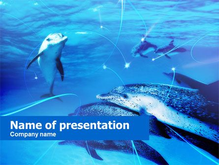 Httppptstarpowerpointtemplatedolphins under the sea dolphins under the sea presentation template toneelgroepblik Image collections