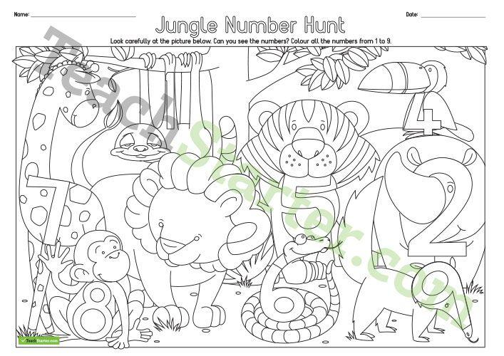 Identifying Numbers Jungle Number Hunt Worksheet Teaching Resource Teach Starter Identifying Numbers Worksheets Teaching Number hunt worksheet for kindergarten