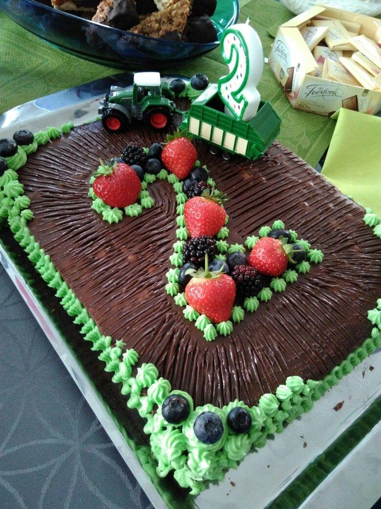 Geburtstagstorte Mit Traktor Fur Meinen Sohn Kuchen Kindergeburtstag Kindergeburtstag Kuchen 2 Jahre Kuchen Kindergeburtstag Traktor