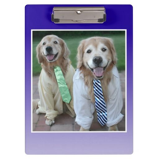Two Golden Retrievers in Shirts and Ties Clipboard by #AugieDoggyStore