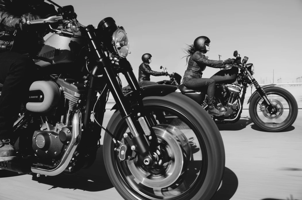 These Are The Things Life Can Throw Harley Davidson Motorcycle Sportster Iron