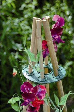die besten 25 bamboo poles ideen auf pinterest sinnesgarten bambus handwerk und unfertiger. Black Bedroom Furniture Sets. Home Design Ideas