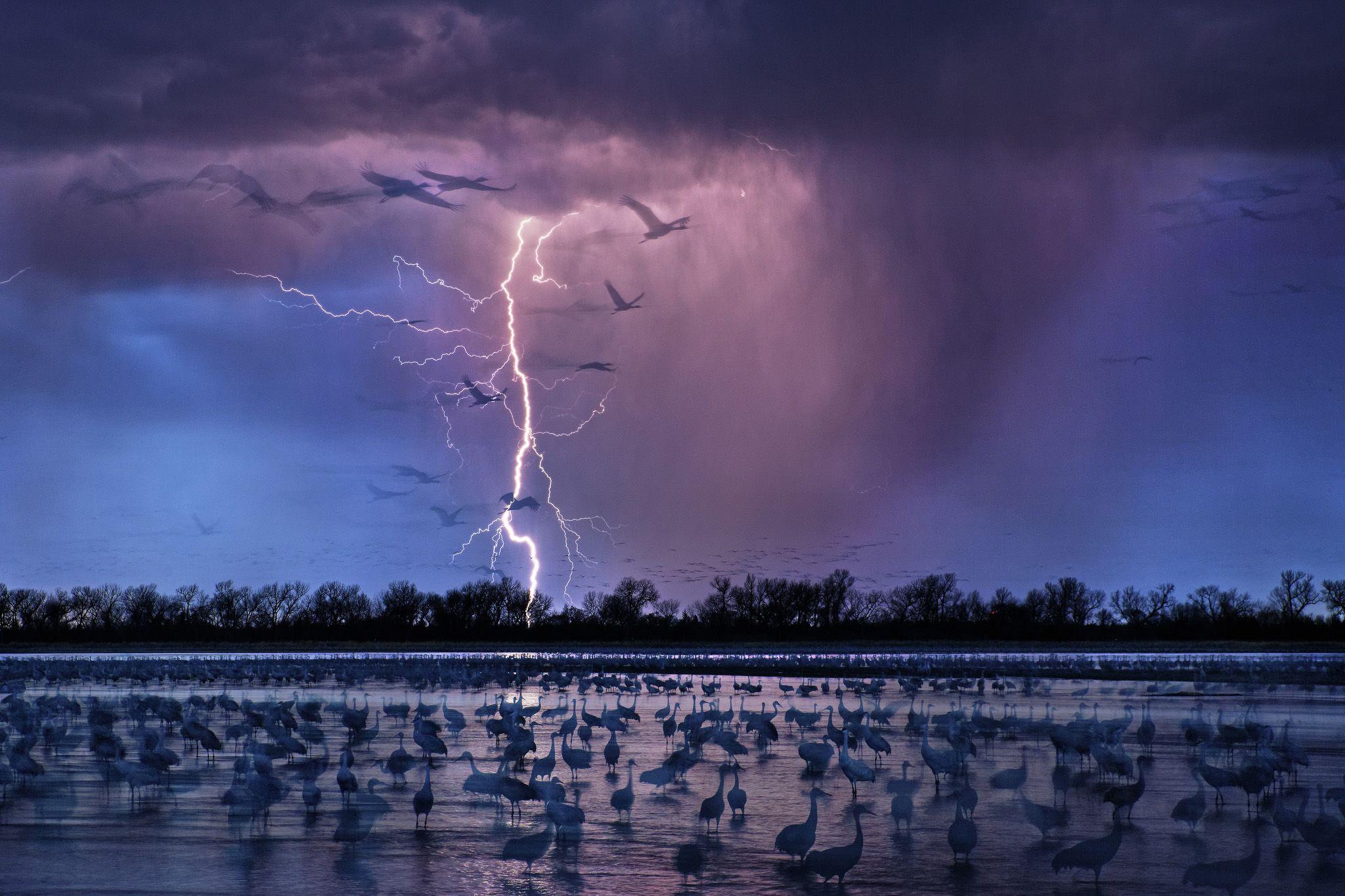 electrifying photo