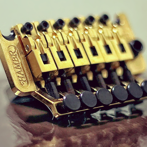 Schaller Licensed Floyd Rose | Guitarz | Floyd rose, Rose