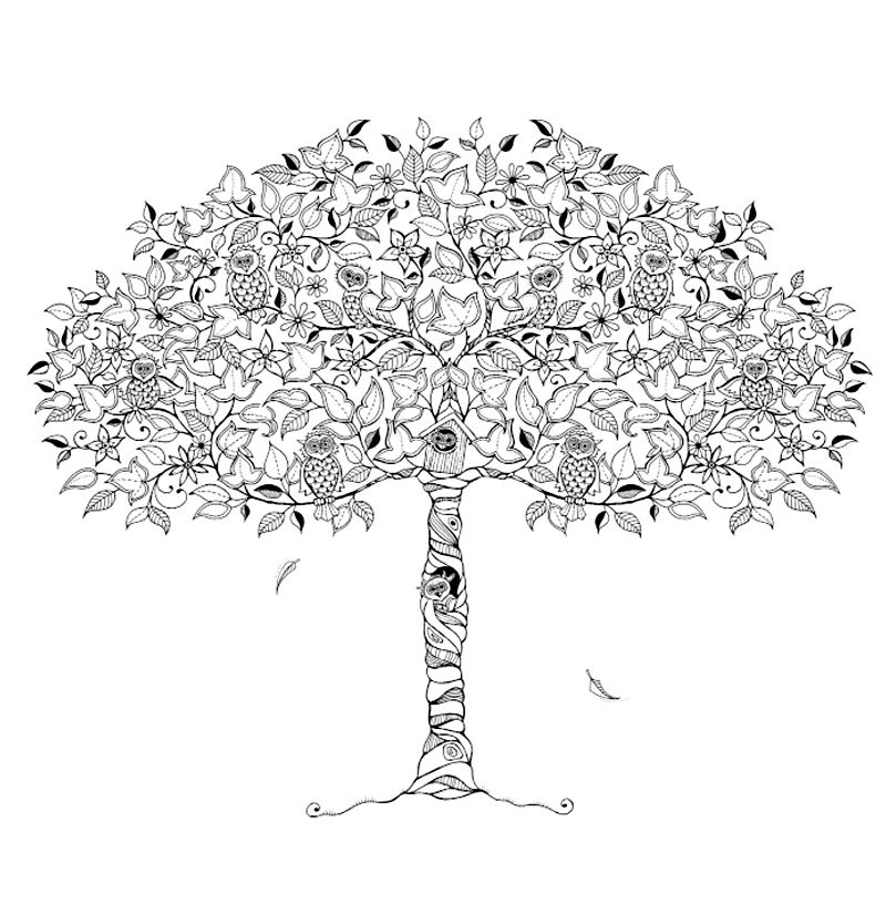 Hidden Owl Tree By Johanna Basford The Secret Garden Coloring Book