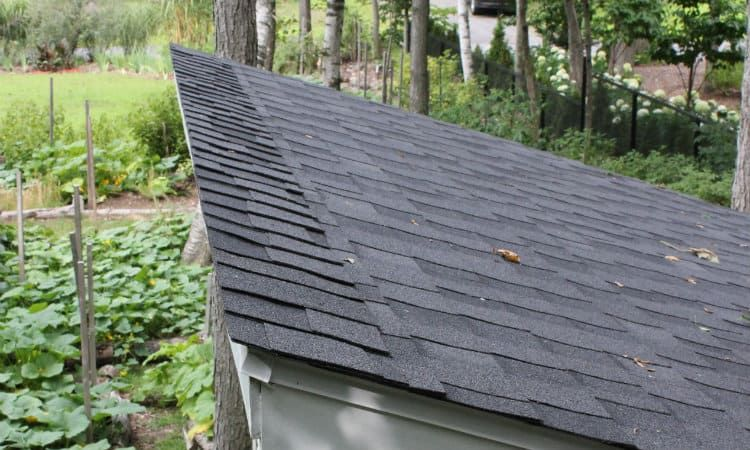 How To Finish The Top Edge Of A Shed Roof In 2020 Shed Roof Installing Roof Shingles Shed Roof Repair