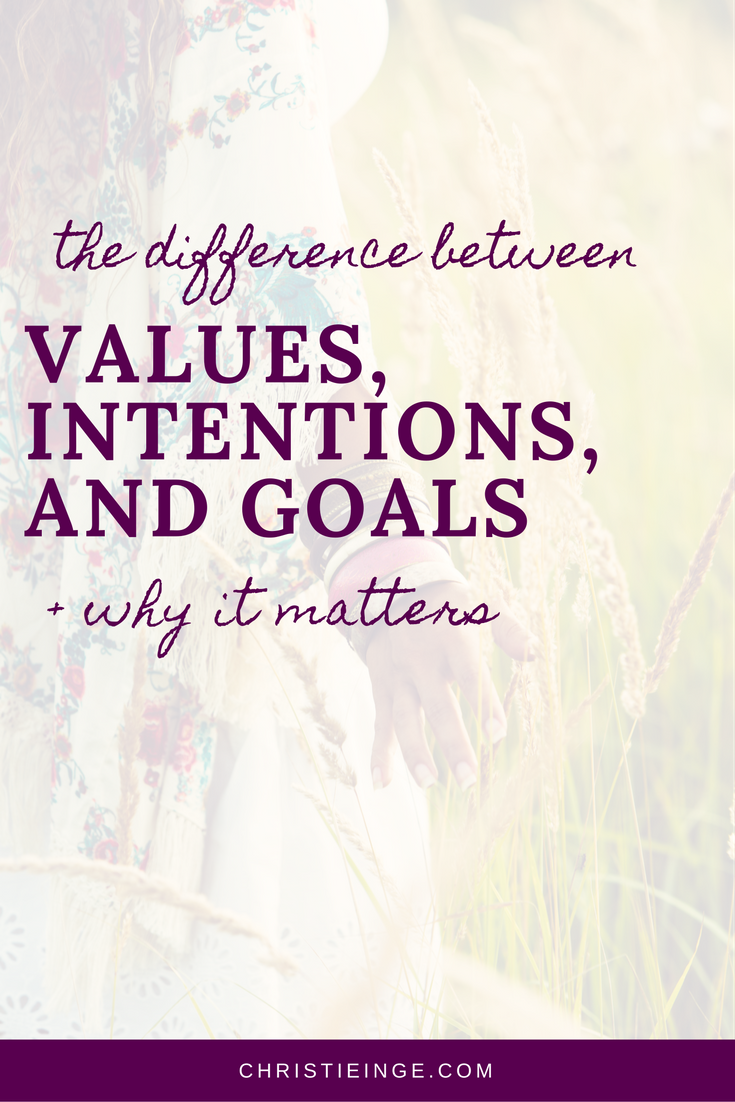 Value Of Life Quotes The Difference Between Values Intentions And Goals  Motivation