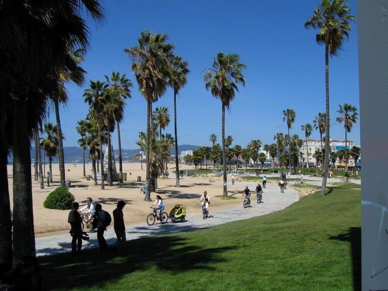 venice beach home venice beach venice beach california venice rh pinterest com