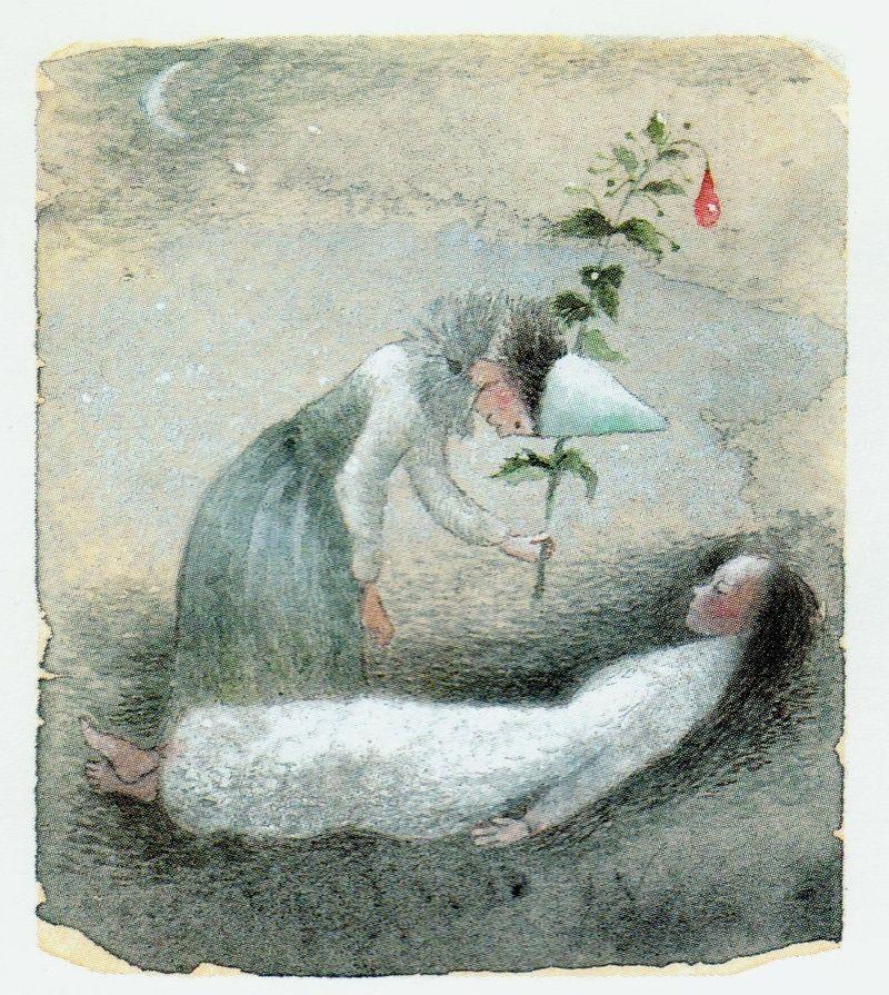 The Wild Swans/ Hans Christian Andersen retold by Deborah Hautzig/ Alfred A. Knopf, 1992.  Artist: Kaarina Kaila