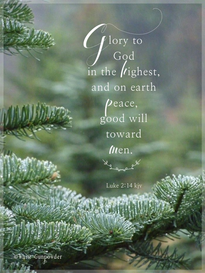 Glory To God In The Highest Peace On Earth Good Will To Men White Gunpowder Christmas Bible Christmas Scripture Christmas Verses