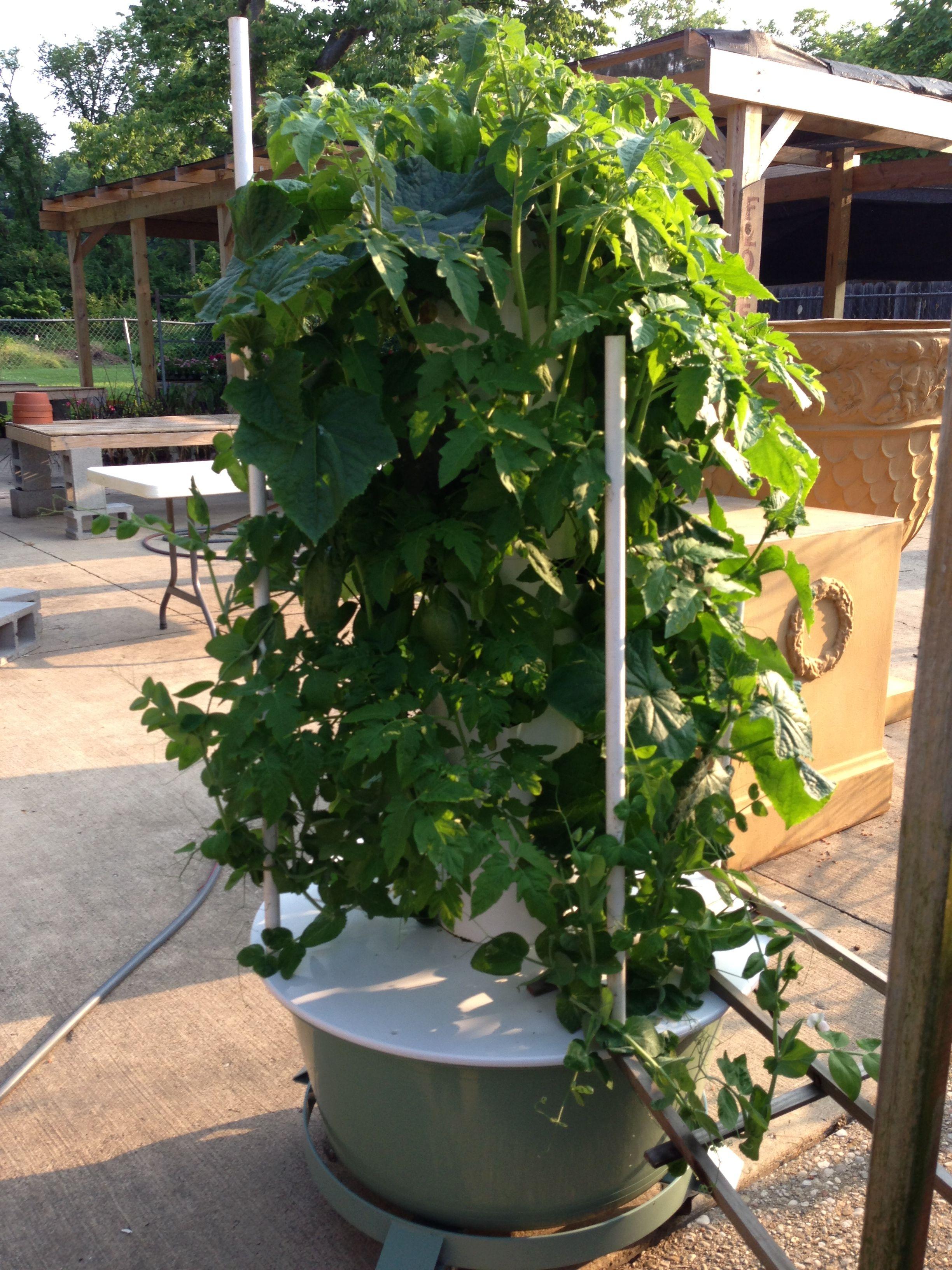 Hydroponic Tower Garden Vertical Garden Diy Hydroponic Gardening System Vertical Garden