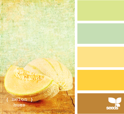 This is the color scheme for our house. The cream is the dining room, the green is the living room; blue is the bedroom, yellow is the kitchen (which is done), brown is the upstairs bathroom, white is the downstairs bathroom.