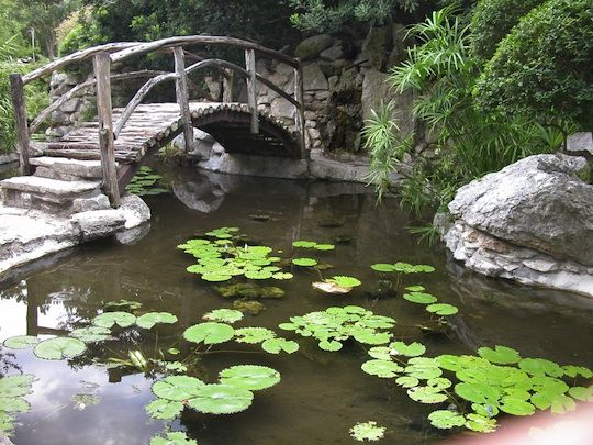 Captivating Taniguchi Japanese Garden In Zilker Metropolitan Parku0027s Botanical Garden In  Austin