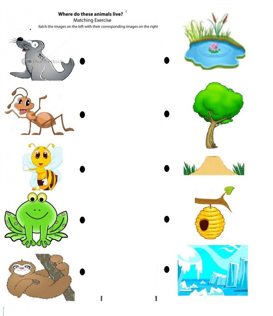 Free Printable Matching Animals To Their Home Worksheet 4 Crafts And Workshee Preschool Worksheets Kids Math Worksheets English Worksheets For Kindergarten