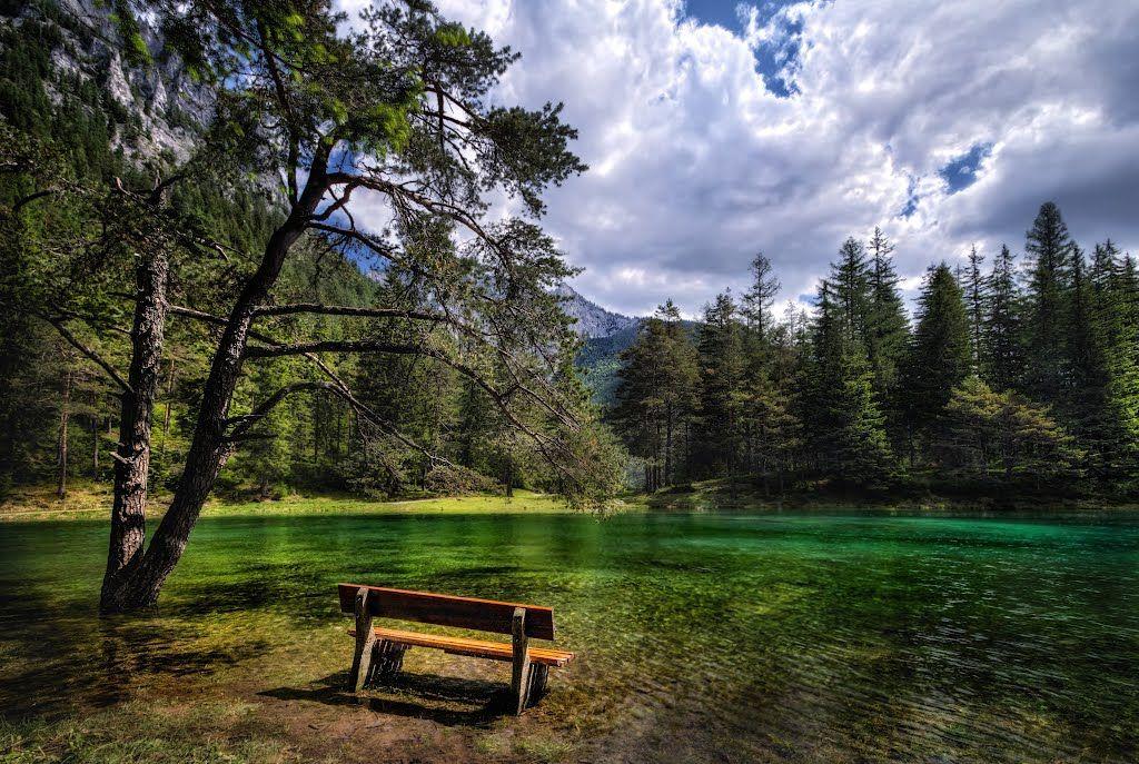 origen del color verde