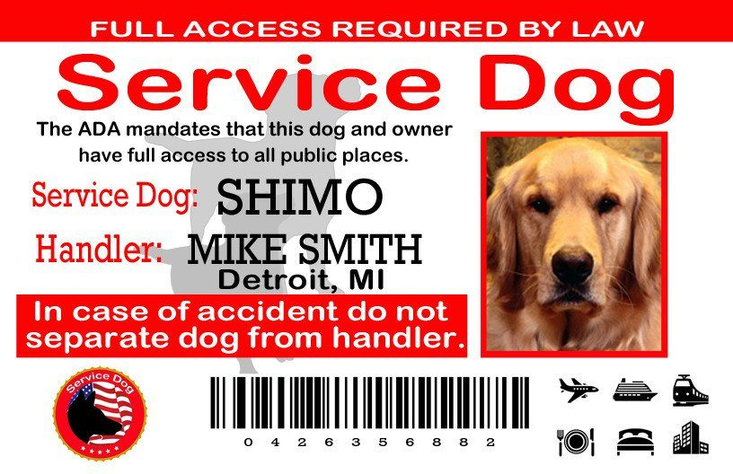 Service Dog Card Template Elegant Service Dog Certification Of America Certify My Dog Service Dogs Service Dog Patches Emotional Support Dog