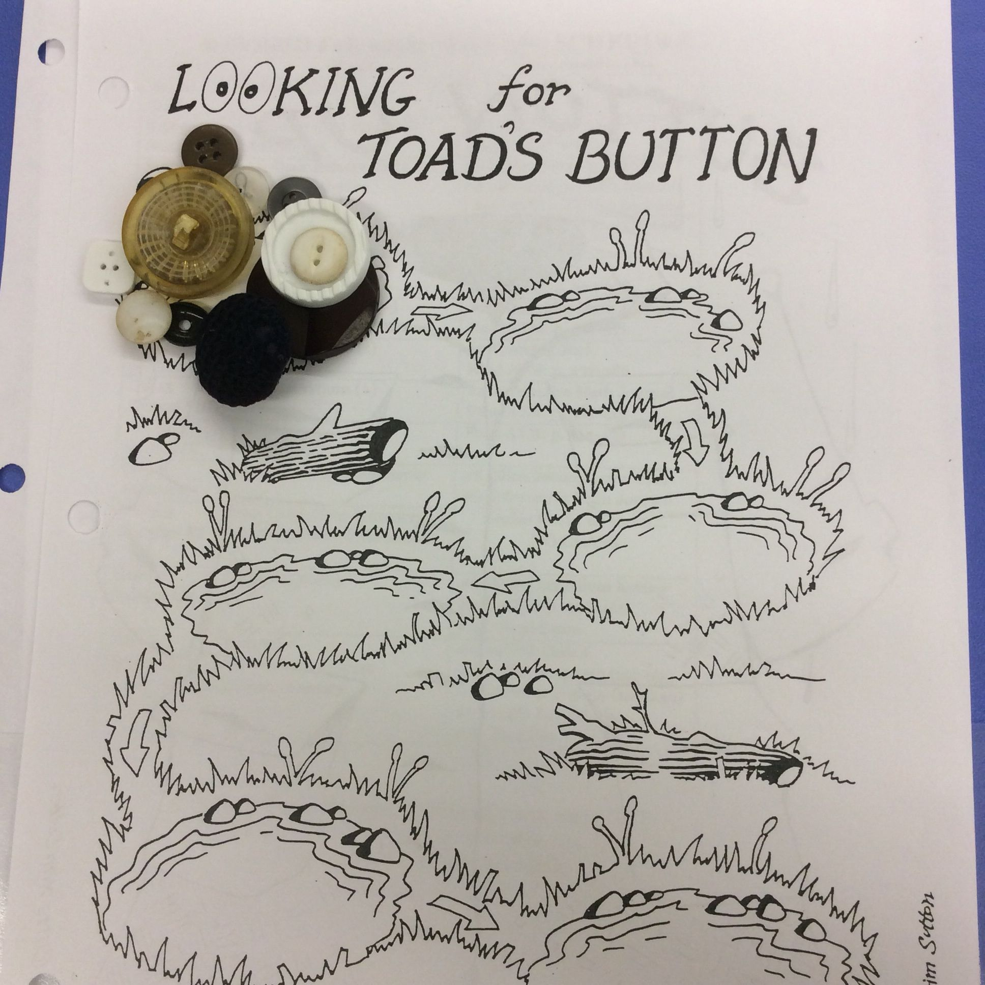 Worksheet For Frog And Toad Are Friends Laminate To Reuse