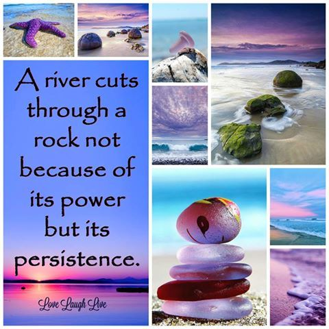 Good Day All Persistence Summer Love Life Laughs