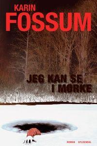 Jeg kan se i mørke (e-bog) af Karin Fossum