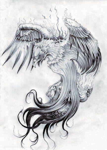 no se pinterest tatouage tatouage phoenix y. Black Bedroom Furniture Sets. Home Design Ideas