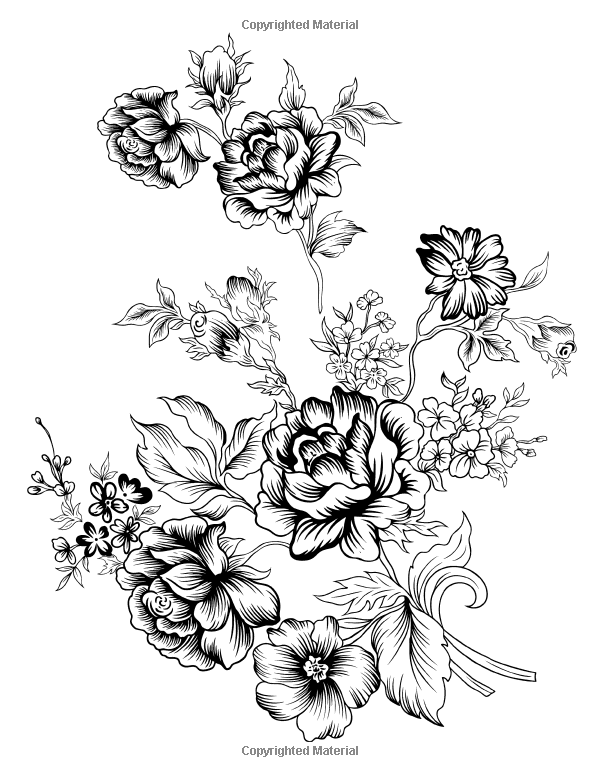 Flowers Coloring Book Beautiful Pictures From The Garden Of Nature Chartwell Coloring Books Pa Floral Drawing Flower Coloring Pages Black And White Flowers