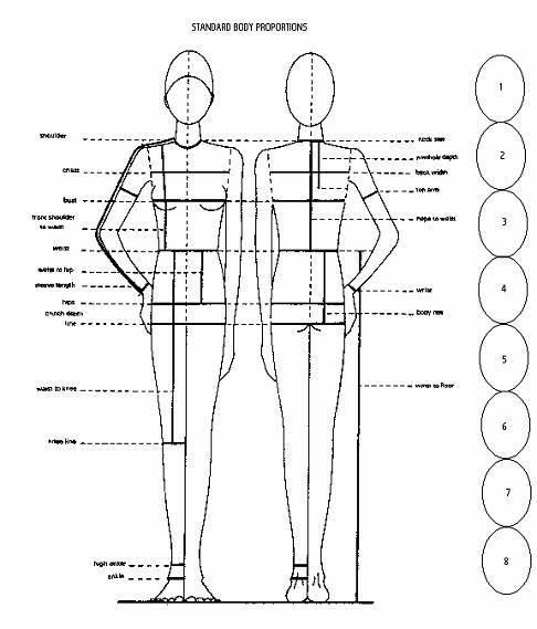 Pattern drafting by height body proportions pattern for Size and proportion