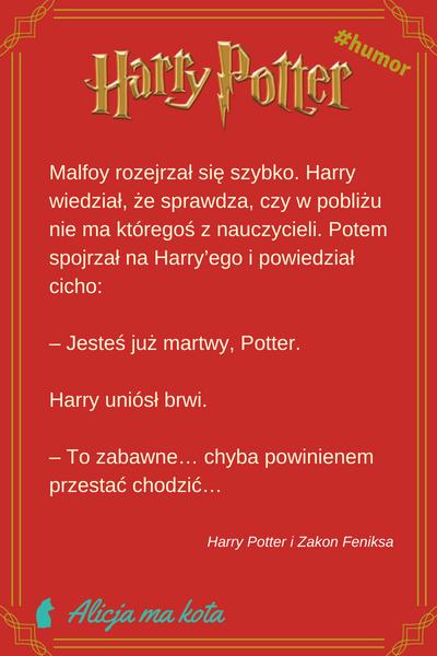 Zuchwałe Docinki I Sarkastyczne żarty Harryego Pottera