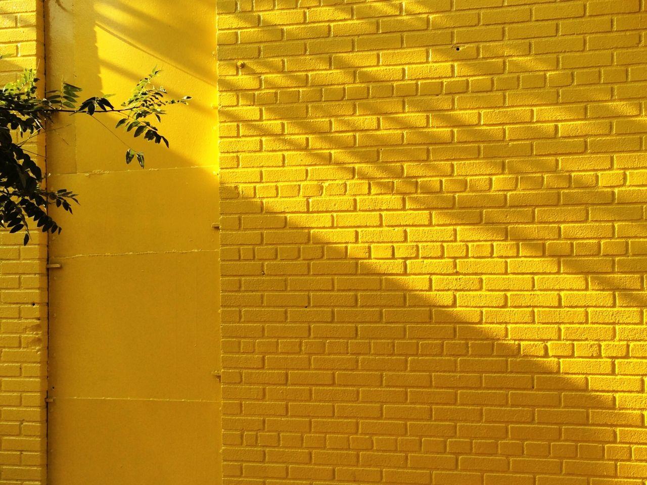 Yellow Wallpaper Tumblr Mustard Desktop