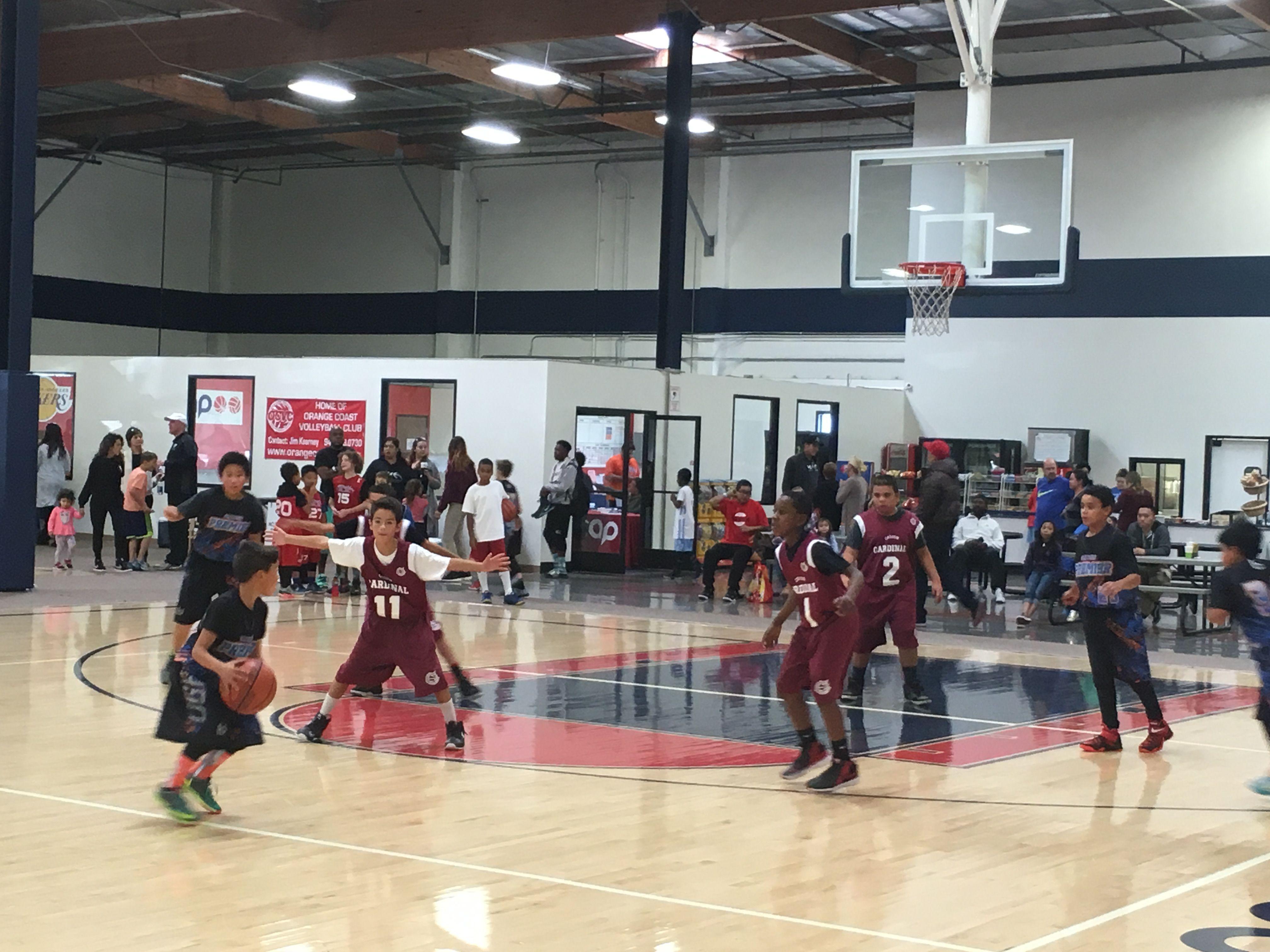 Everypost Aau Basketball Cardinals Basketball Open Gym