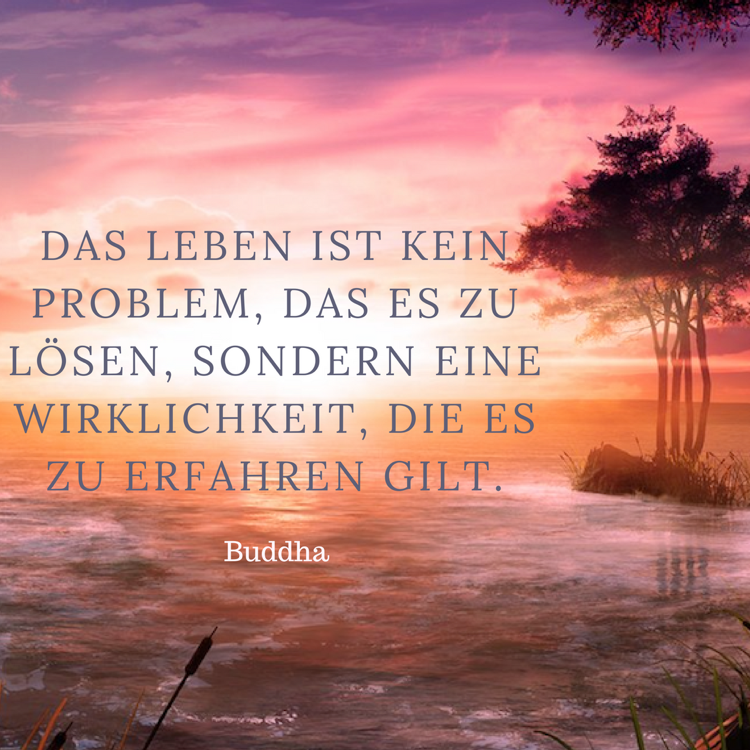 Inspirierende Zitate Uber Das Leben Und Spruche Zum Nachdenken Dalailama Moment Lebst Augenblick Wahre Weisheiten Lebens Movie Posters Quotes Meditation