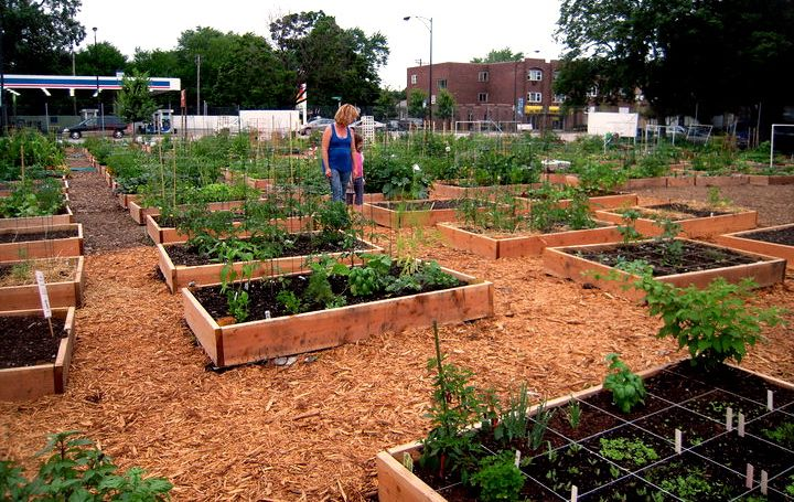 community garden design | Peterson Garden Project on ...