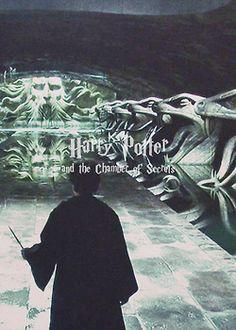 Harry Potter Et La Chambre Des Secrets Harry Potter Magic Harry James Potter Harry Potter Books