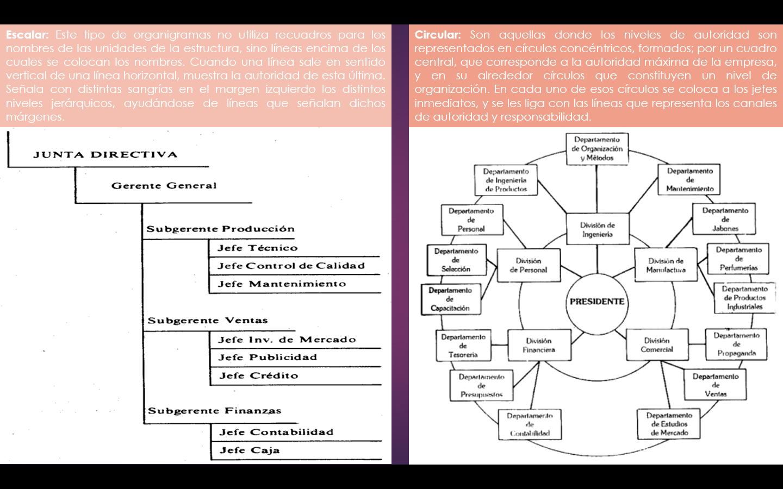 Organigrama Escalar Y Circular Organigrama Comunicacion