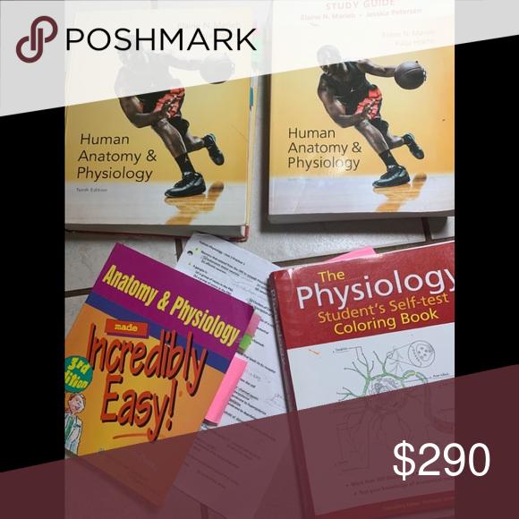 Books Human Anatomy & Physiology book & study guid Pearson ...