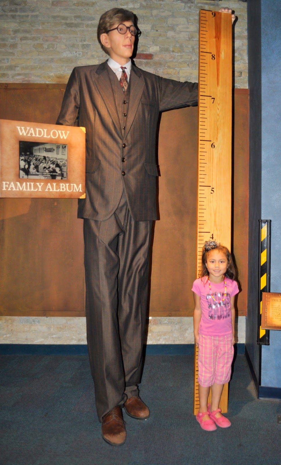 Tallest Man Exhibit Ripleys Believe It Or Not Cool Exhibits Tall