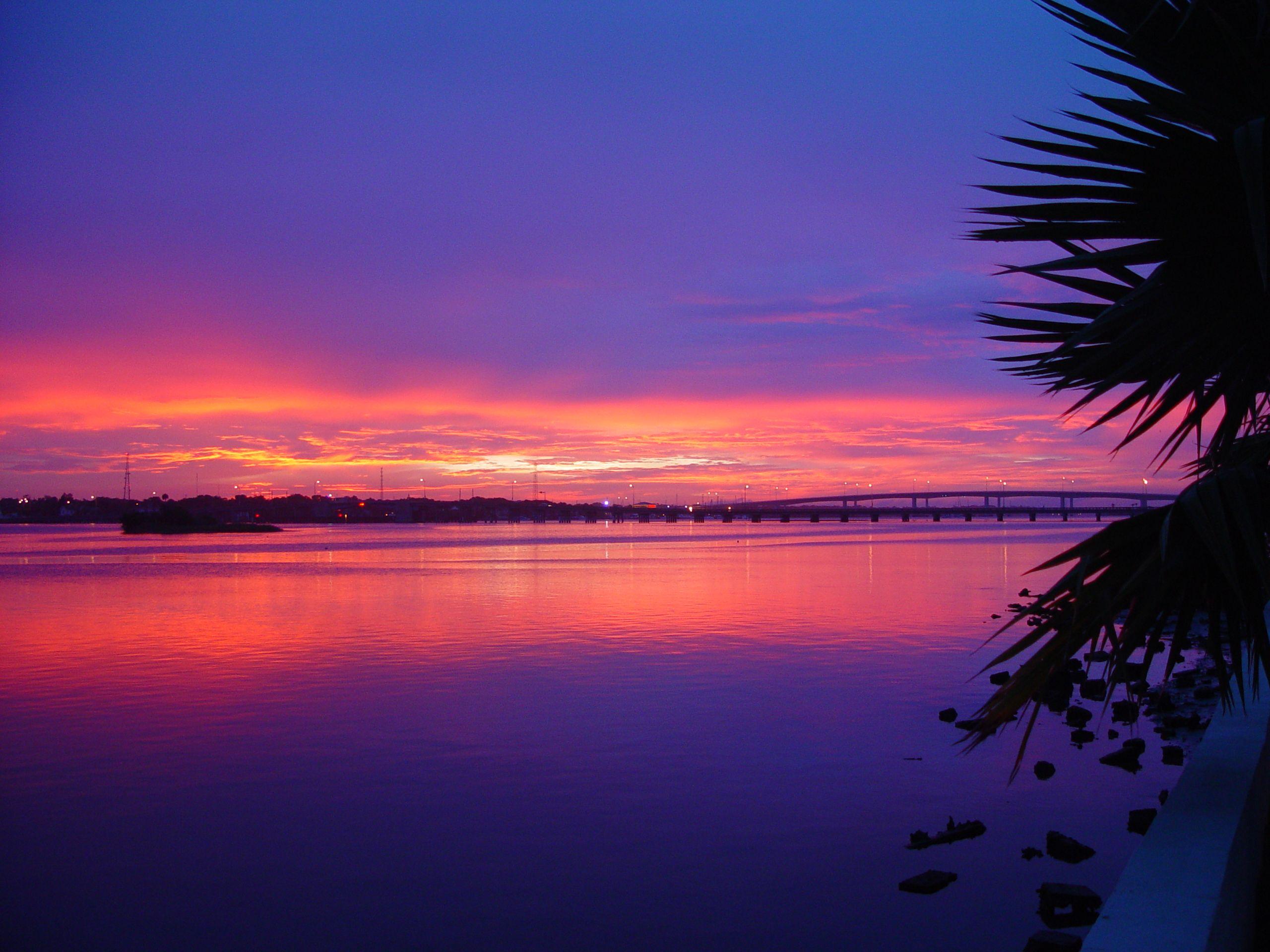 Sunset Over Beach Of Palm Trees Hd Wallpaper: Daytona Beach Halifax River Tropical Palm Tree Sunset