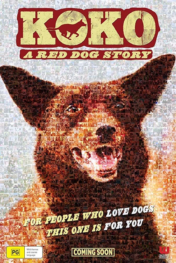 aksacinema koko netflix movie in 2020 Dog stories