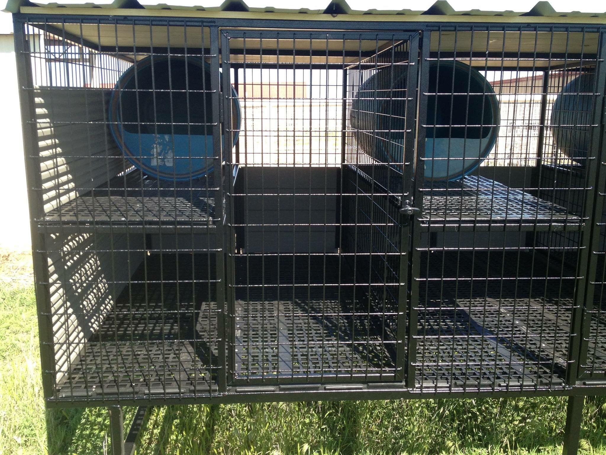 Above Ground Dog Kennel Dog Kennel Dog Cages Dog Training