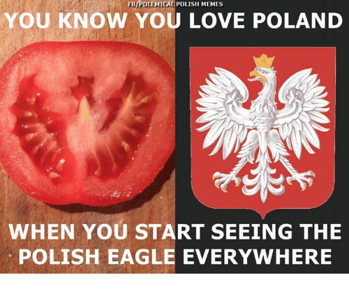 Memes Eagle And Poland Fbipolemical Polish Memes You Know You